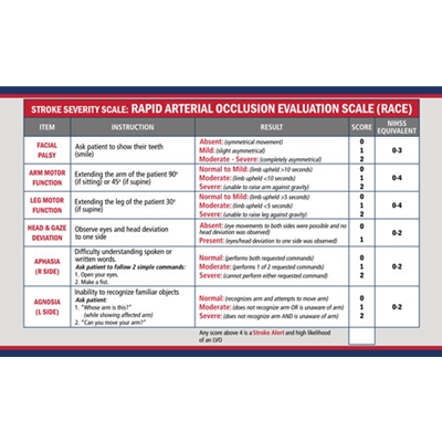 "AEL313<br>3""x 5"" CSTAT and RACE CARD (Pack of 50)"